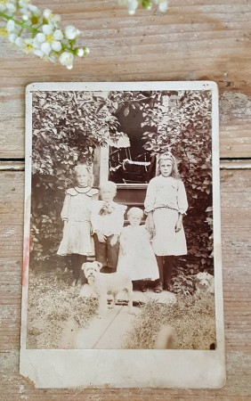 Old Cabinet Card of 4 Siblings & Dog