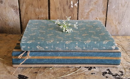 Pair of Blue Cloth Covered Books