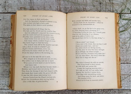 Shelley's Selected Poems